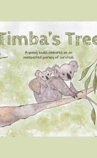 Timba's Tree